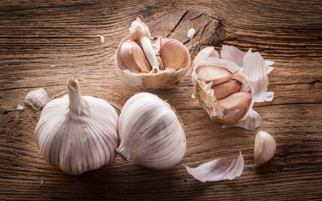 Great Ontario Garlic Abounds